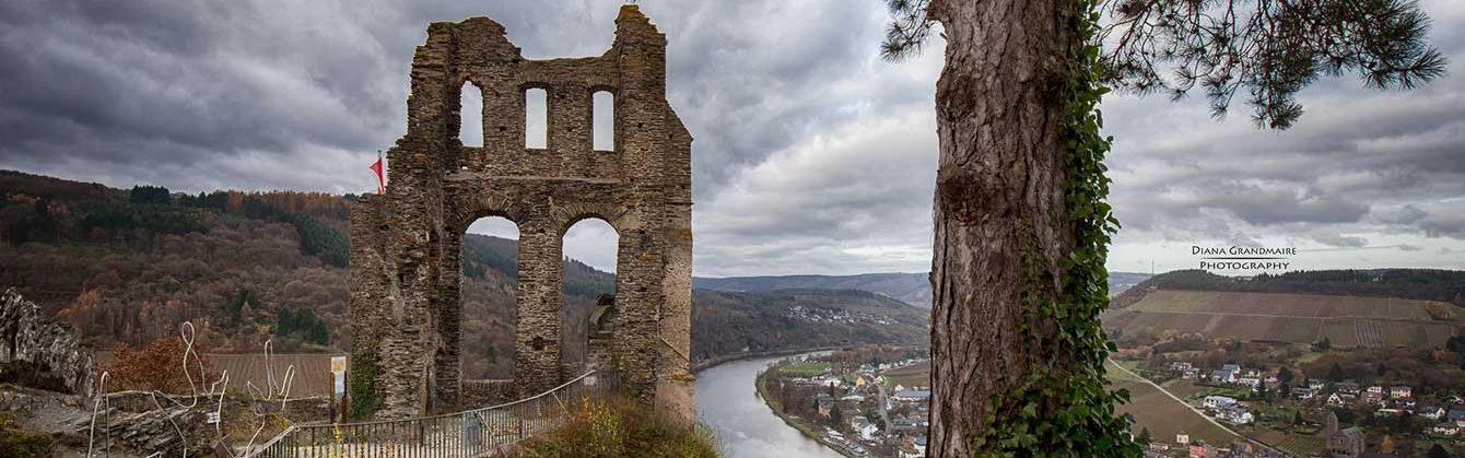 Landesverband Freier Wählergruppen Rheinland-Pfalz e. V.